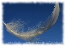 Long Feathers